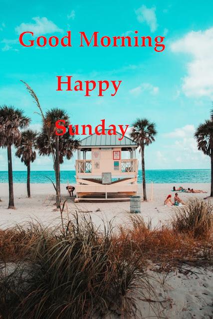 Good Morning Happy Sunday.