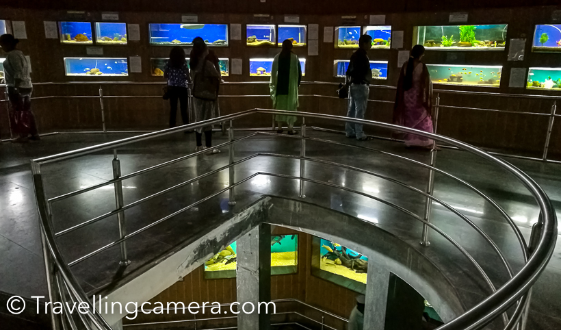 These aquarium tanks are spread over 2 floors of this building and ground floor is administrative office.