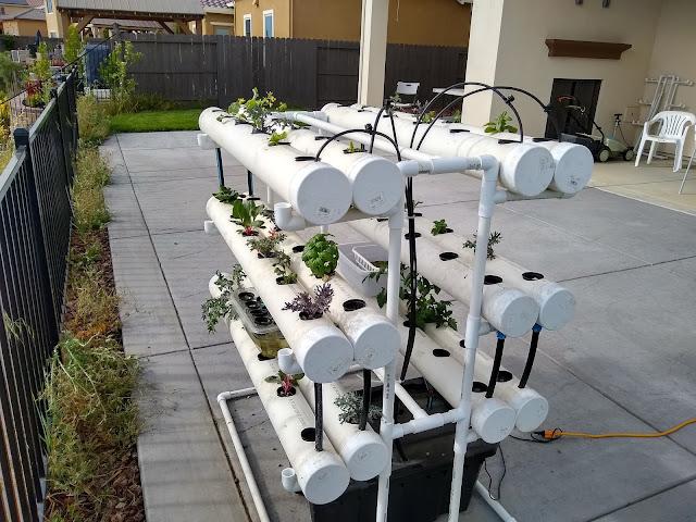 hydroponic garden nft method
