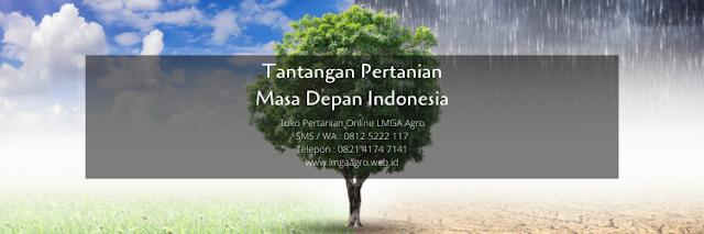 pertanian,perubahan iklim,lahan pertanian,metode pertanian,lmga agro
