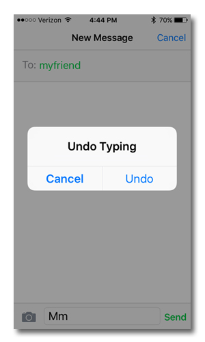 iPhone with Undo Typing prompt