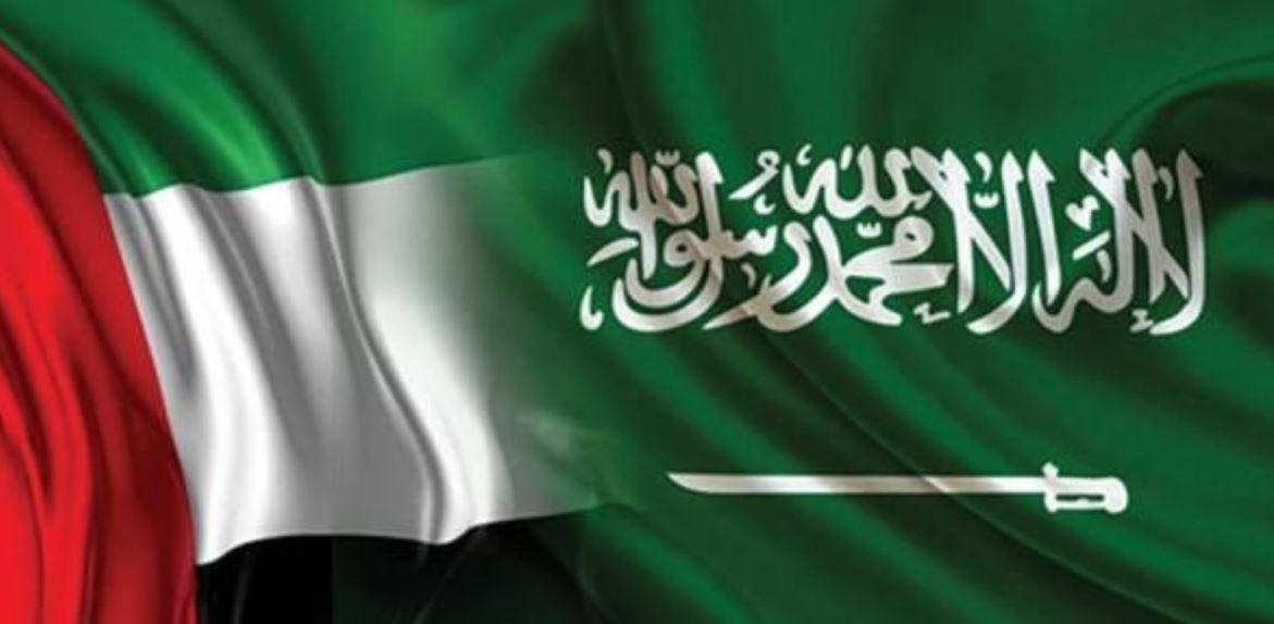 السعودية والإمارات تتصدران دول المنطقة في نمو قطاع تكنولوجيا المعلومات