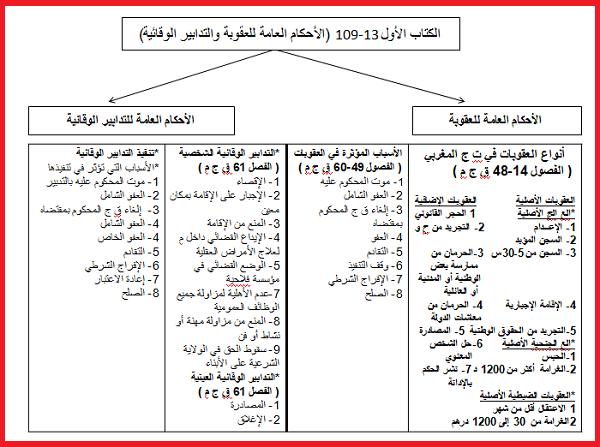 ملخص القانون الجنائي العام pdf s2