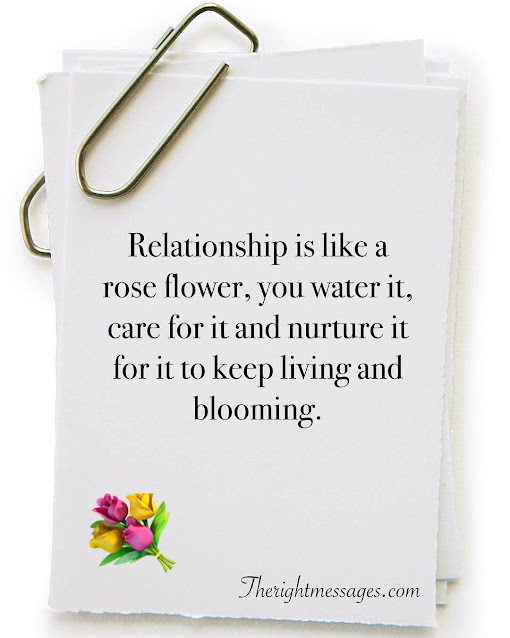 Relationship Is Like A Rose Flower You Water
