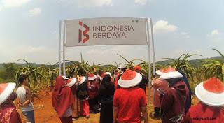 Kebun Indonesia Berdaya Dompet Dhuafa