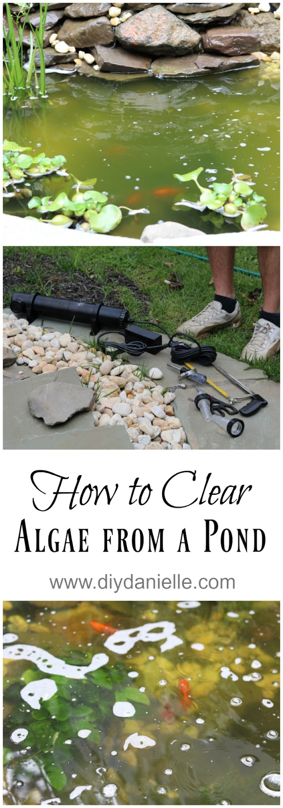 clearing algae from a pond with a uv light diy danielle. Black Bedroom Furniture Sets. Home Design Ideas