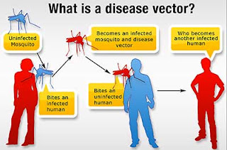 methods of disease vector control