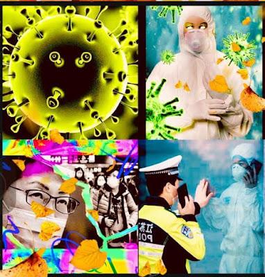 corona virus, novel coronavirus