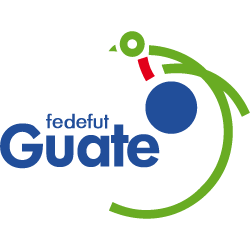 Plantel do número de camisa Jogadores Guatemala Lista completa - equipa sénior - Número de Camisa - Elenco do - Posição