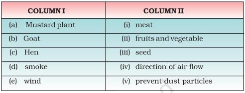 Question 15 Class 6th NCERT Exemplar Chapter 1