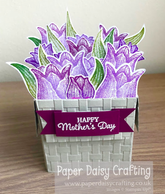 Nigezza Creates with Stampin' Up! & Paper Daisy Crafting & Timeless Tulips