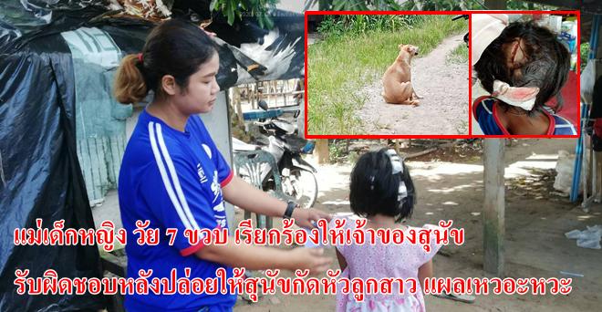 คลิป |แม่เด็กหญิง วัย 7 ขวบ เรียกร้องให้เจ้าของสุนัข รับผิดชอบ หลังปล่อยให้สุนัขกัดหัวลูกสาว แผลเหวอะหวะ