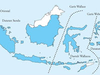 PERSEBARAN BIODIVERSITAS INDONESIA-MATERI BIOLOGI KELAS X SMA-MA