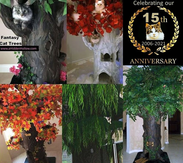 Best Large Cat Tree