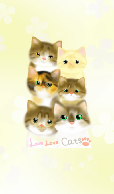 love love cute cats 2