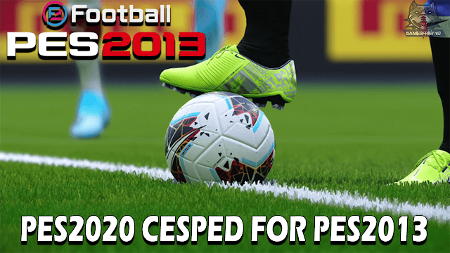 [Image: CESPED%2BPES%2B2020%2BFOR%2BPES2013.png]