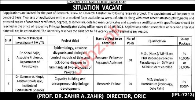 UAF Jobs 2021   University of Agriculture Faisalabad Jobs 2021