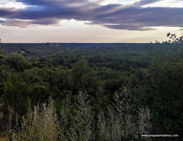 lugares de naturaleza sin salir de Madrid