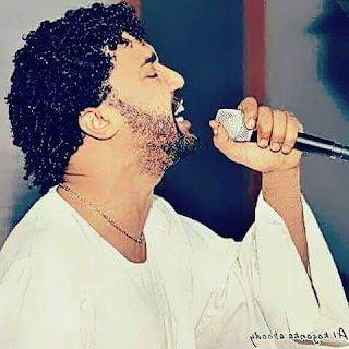 الفنان أحمد الصادق 2020 13254052_1092524234142888_6987366228734987263_n
