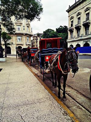Dorożki w Hawanie