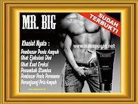 Cara Menambah Ukuran Mr P Yang Cepat - Jual Mr Big di Asahan