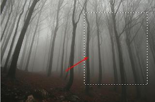 Cara-Membuat-Merubah-Foto-Menjadi-Efek-Seram-Horor-Dengan-Photoshop