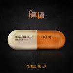 Gunplay - Cheap Thrills (feat. Rick Ross) - Single Cover