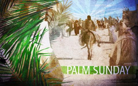 https://1.bp.blogspot.com/-VY3MMd0AUP4/TazsSrz2gAI/AAAAAAAAAGw/a_HNvh5G054/s1600/palmsunday.jpg