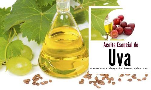 El aceite esencial de uva es uno de los aceites bases más comunes para los masajes