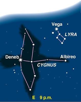 Dấu hiệu nhận biết bạn là Starseed đến từ chòm sao Cygnus (Thiên Nga)