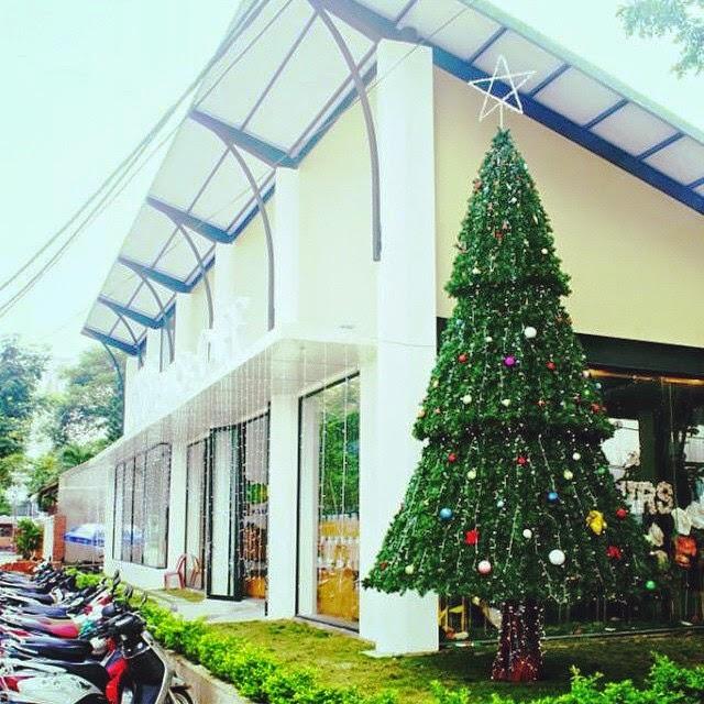 Ảnh: Cây thông Giáng sinh rực sáng vòng quanh Đà Nẵng