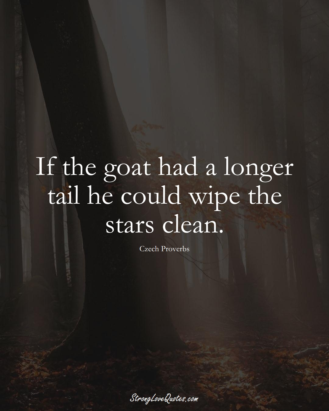 If the goat had a longer tail he could wipe the stars clean. (Czech Sayings);  #EuropeanSayings