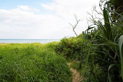 沖縄 干潮の海