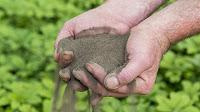 bepaal de grondsoort in de tuin