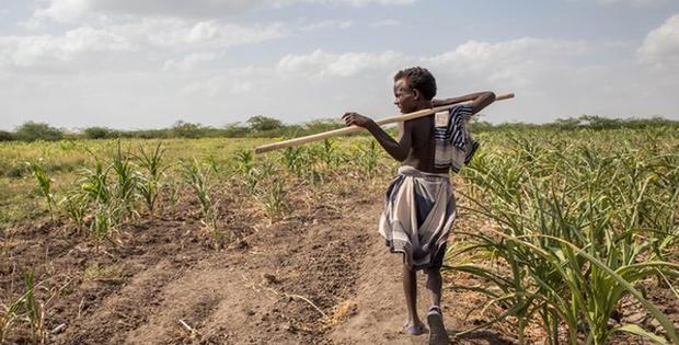 Keadaan Bebebrapa Negara di Benua Afrika