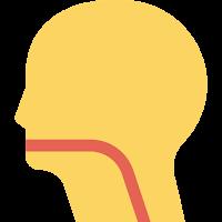 Throat (tenggorokan)