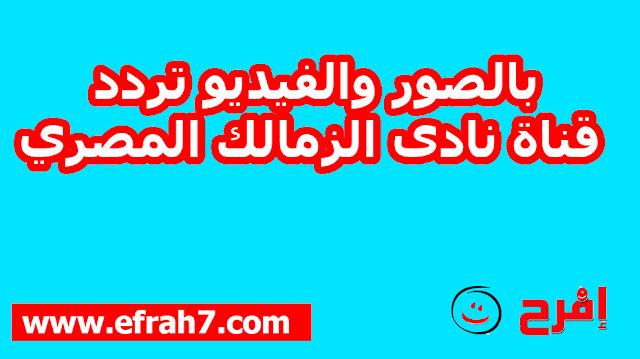 بالصور والفيديو تردد قناة نادى الزمالك المصري