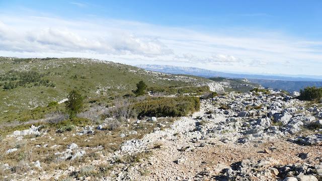 Paysage, sur le flanc du Garlaban