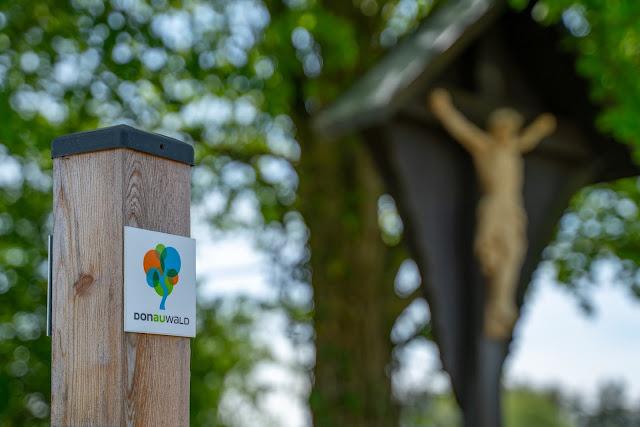 Premiumwanderweg DonAUwald  Etappe 5 von Höchstädt nach Schwenningen 17