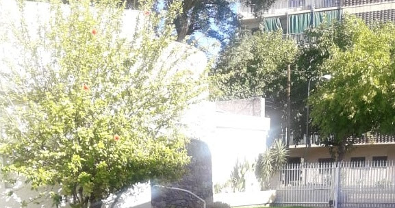 VENDO PROPIEDAD DE 1100 m2 SOBRE CALLE 9 DE JULIO, EN CAPITAL, SAN JUAN, ARGENTINA