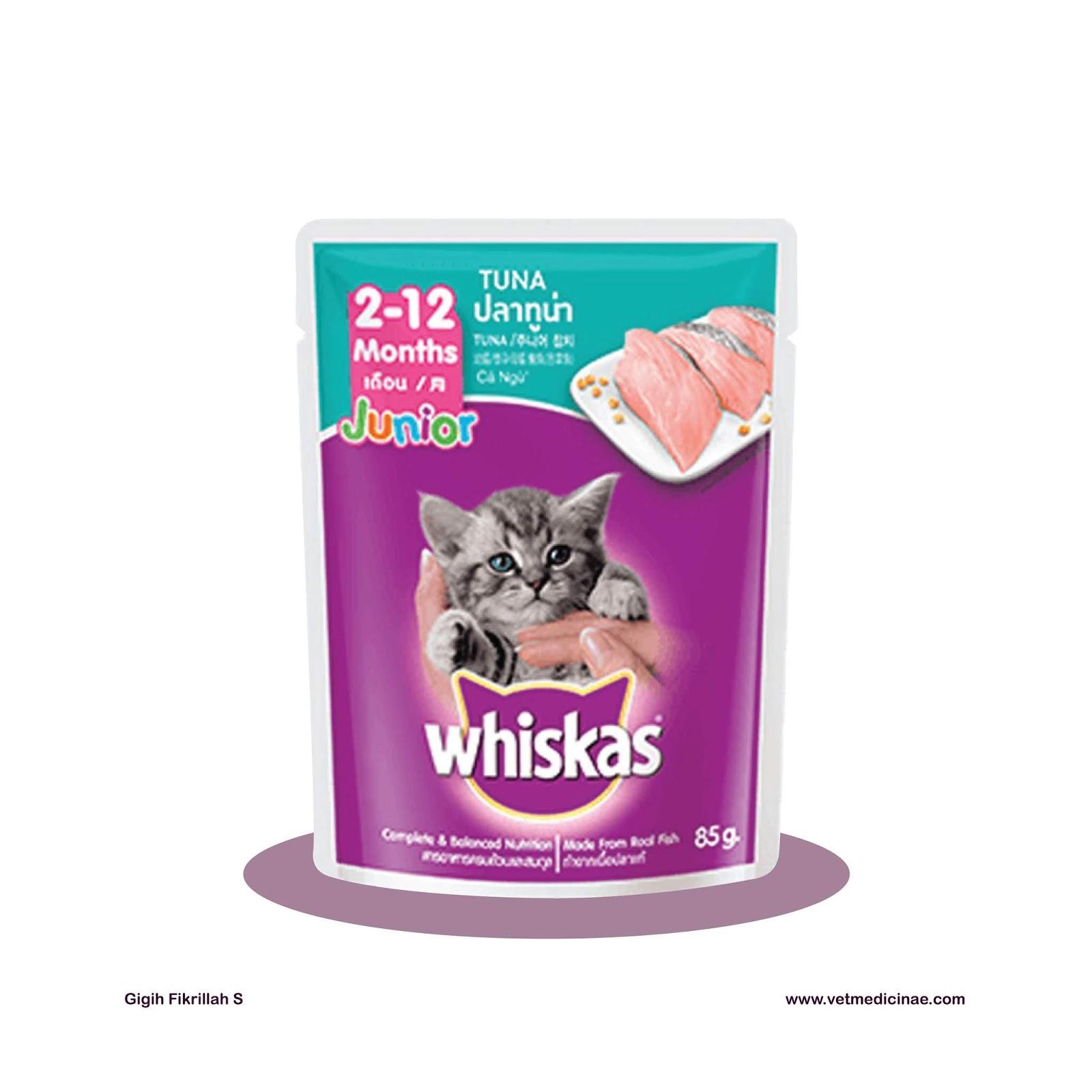 15 Rekomendasi Makanan Kucing Terbaik Untuk Kucing Lucu Kamu