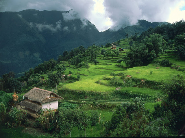 rich-biodiversity-in-nepal