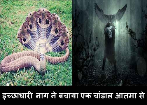 ichhadhari nag ne bachaya ek chandal aatma se bhoot kahani