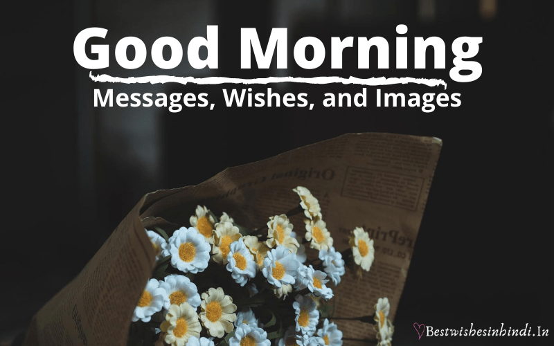 good morning message for a friend, today good morning images download, good morning wishes