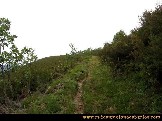 Ruta Bosques de Moal: Camino al mirador de Montecín