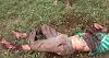 Homem é encontrado morto em Vila Propício e ataque de onça pode ser a causa