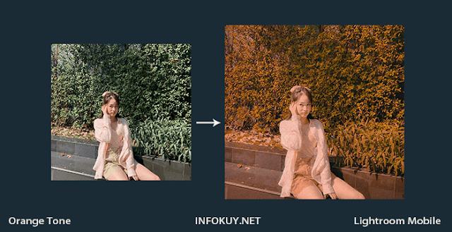 Tutorial Lightroom Orange Tone