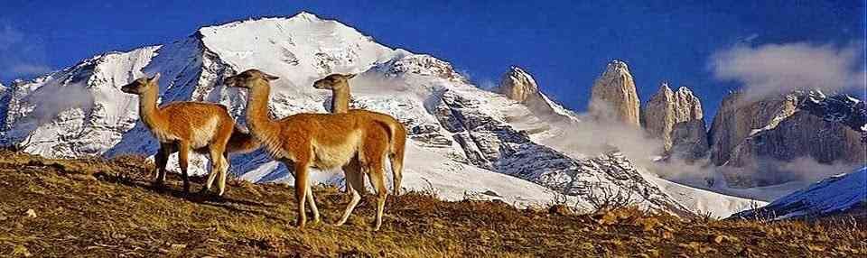 Chile Travel and News