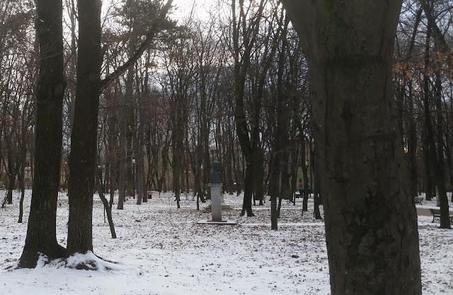 פרוטומה בפארק
