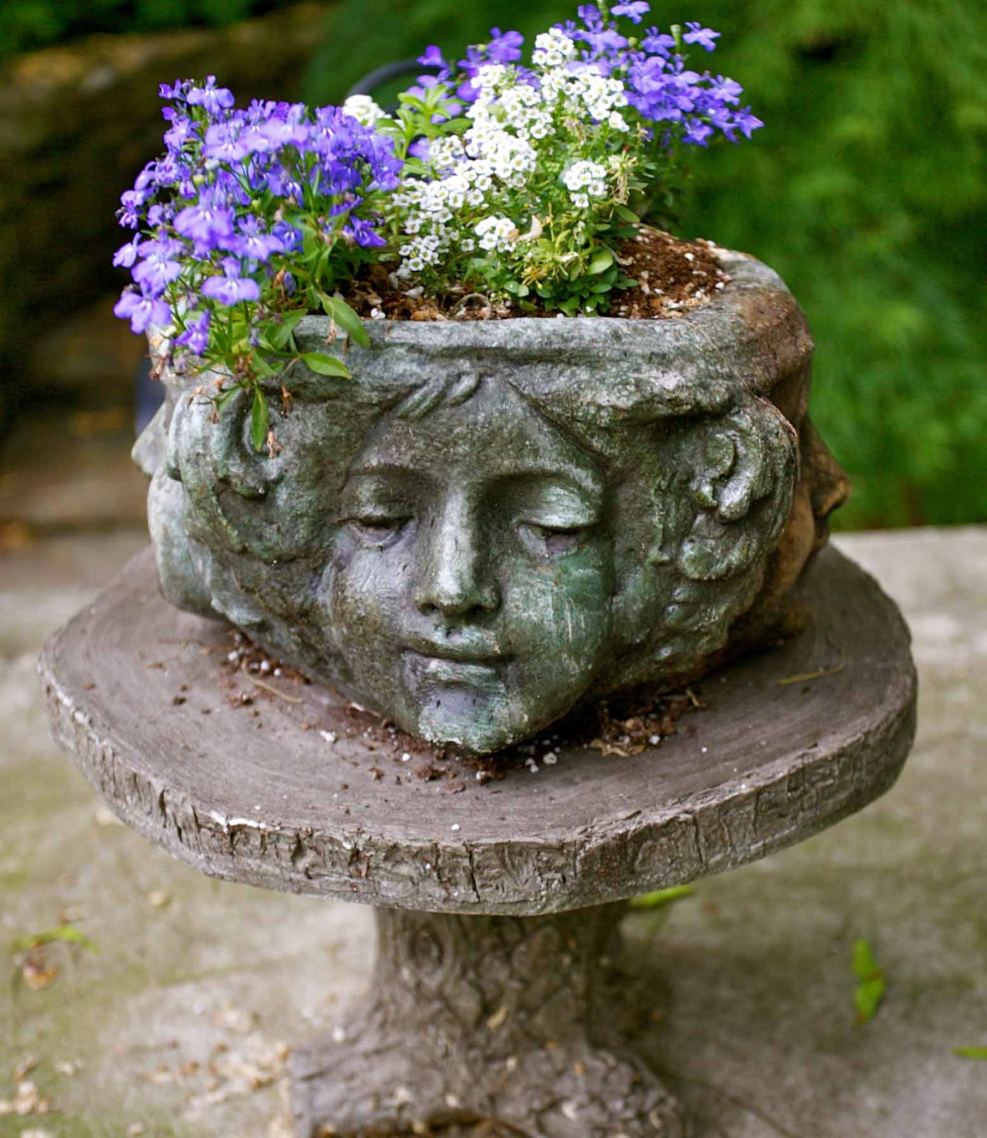 Planter Heads A Witch Head And Planters